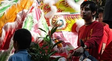 Vietnamese Tet and Chinese New Year